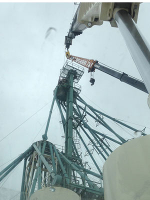Crane Work at a Seed Plant
